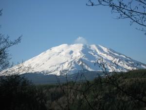 Mt St Helens Washington
