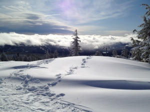 A gorgeous January 30, 2012, from TImberline, Oregon