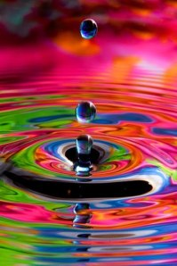 A small drop in the rainbow of consciousness.