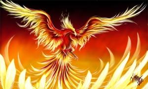 Do or Die- the Phoenix' Resurrection